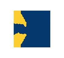Logo Flare System
